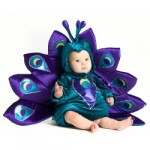 Baby Infant Toddler Peacock Halloween Costume