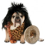 Best Halloween Dog Costumes