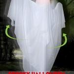 Spooky Halloween Animatronics